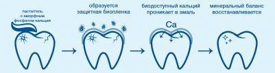 Действие аморфного фосфата кальция на эмаль